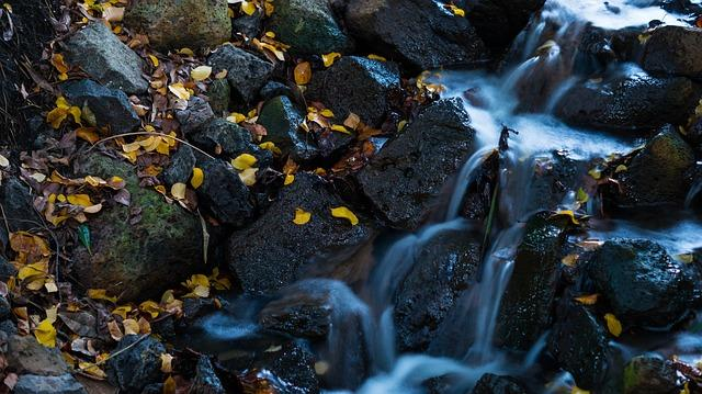 waterfall, leaves, water